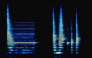 spectral fujara